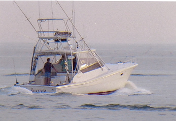 Blue Water sport fishing charters, the hottest, fastest charter boat off the coast of Montauk, you will always catch fish on this boat! Book your charter today!